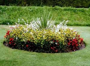 Зона Багуа в саду. Центр удачи
