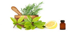 запахи и эфирные масла