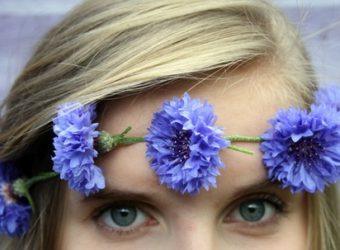 Травы для здоровья глаз