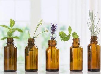 Магические обряды с ароматными растениями