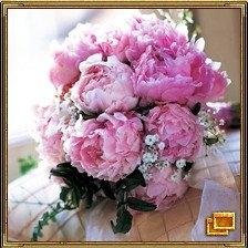 Пион - цветок радости, символ изысканной страсти и плотской любви. Он является самым благоприятным символом для молодых супружеских пар.