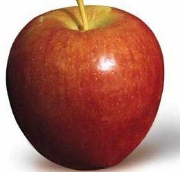 Яблоки — оберег для дома