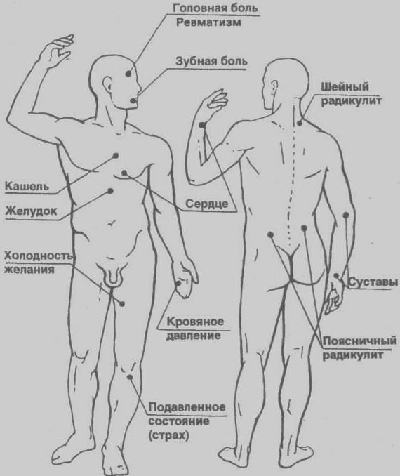 Места расположения точек акупунктуры и акупрессуры известны точно.  Они расположены на 14 линиях (меридианах)...