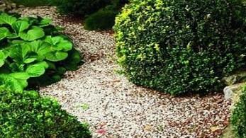 тропинки в саду