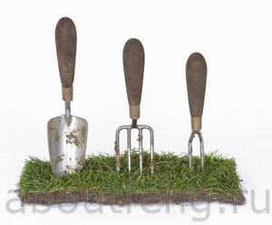Как почистить энергетику огорода