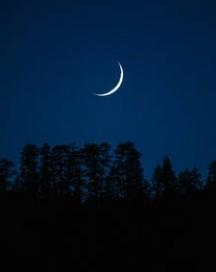на растущей луне